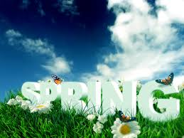 WELCOME TO SPRING